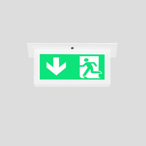 LEDEX Recessed Mounted White Exit Sign